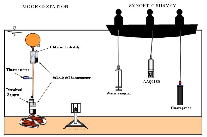 Ocean Heat Content How Do You Measure That furthermore Physical properties of the oceans also How Can Two Seas Not Mix together with Red02 in addition Osmotic Process Introduction. on salinity diagram