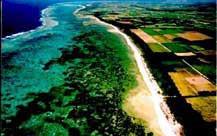 coast_land[1].jpg