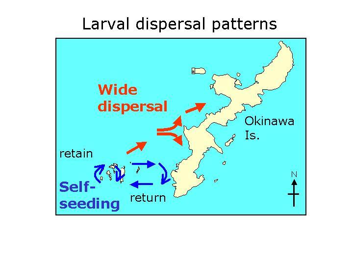 dispersal%20patterns[1].jpg