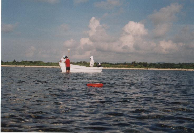 boat[1].jpg