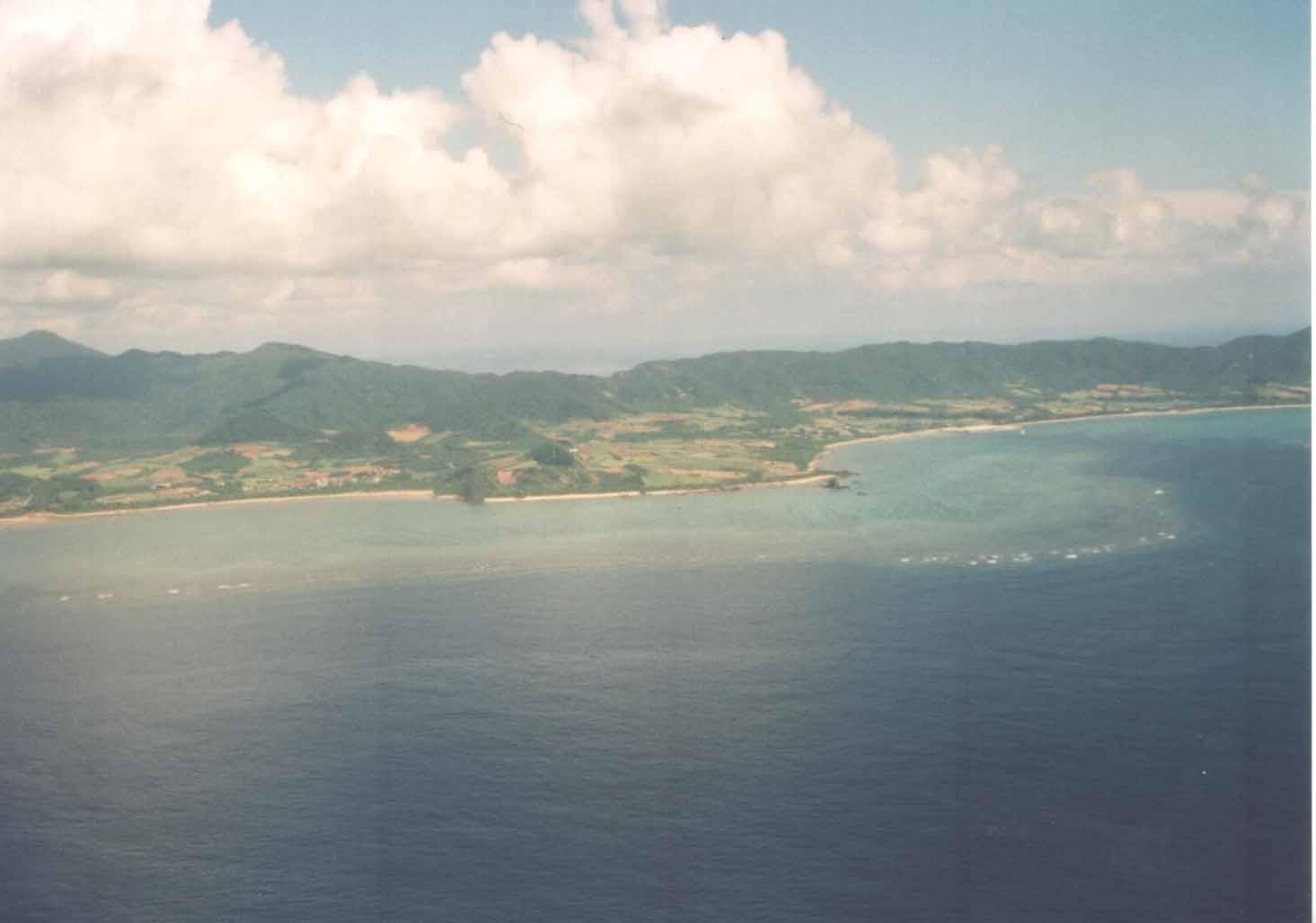 reef1[1].jpg